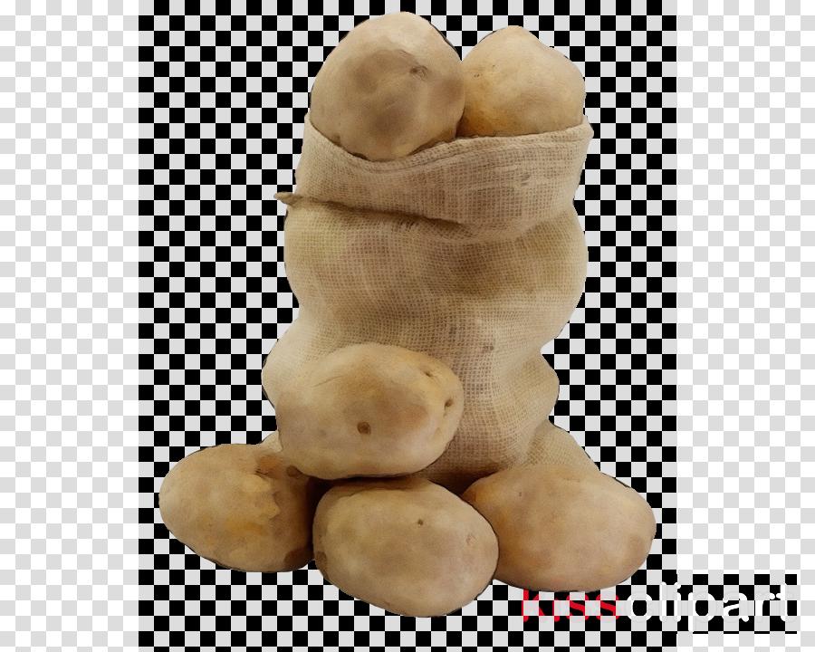 root vegetable potato vegetable solanum food
