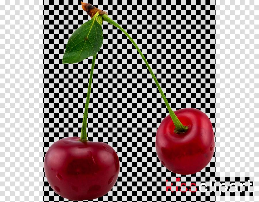 cherry natural foods fruit plant leaf