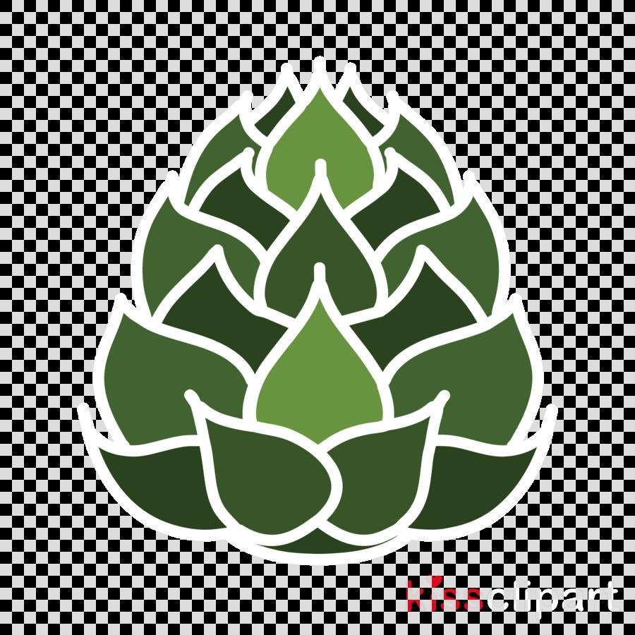 green leaf plant artichoke tree