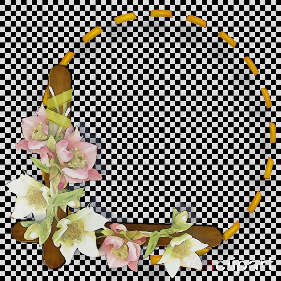 lei flower plant petal hair accessory