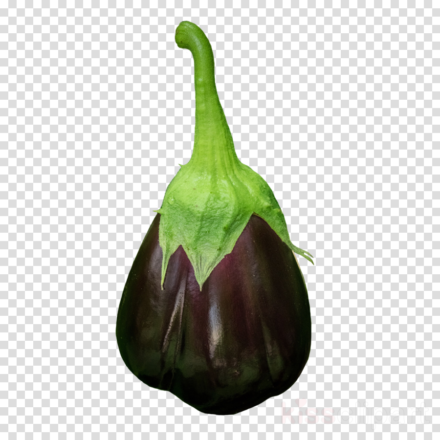 eggplant plant vegetable flower food
