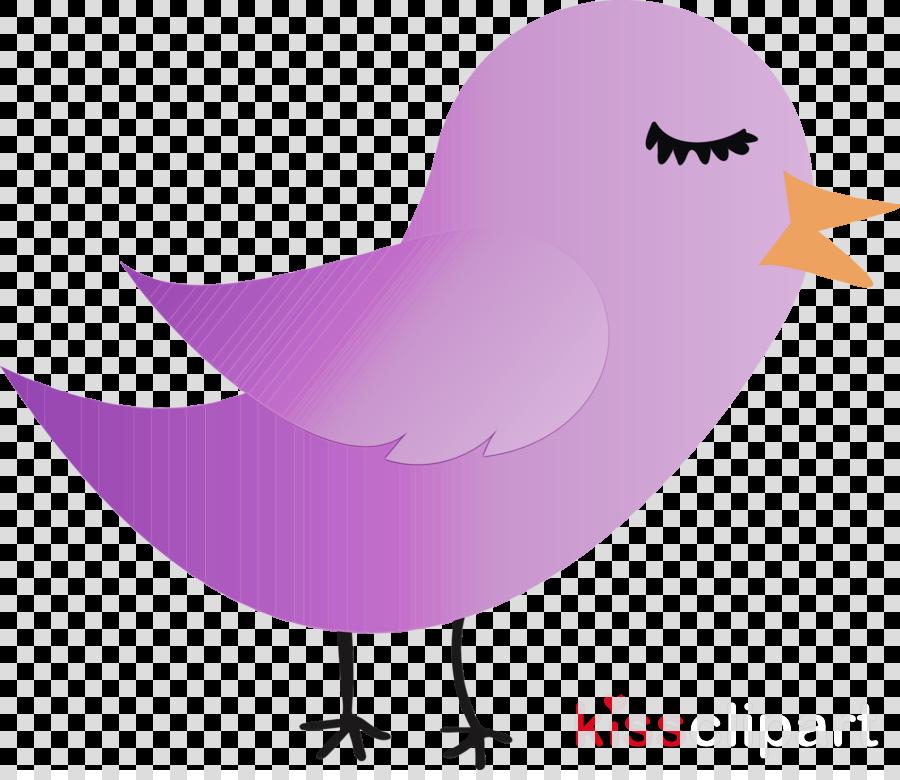 purple pink violet cartoon bird