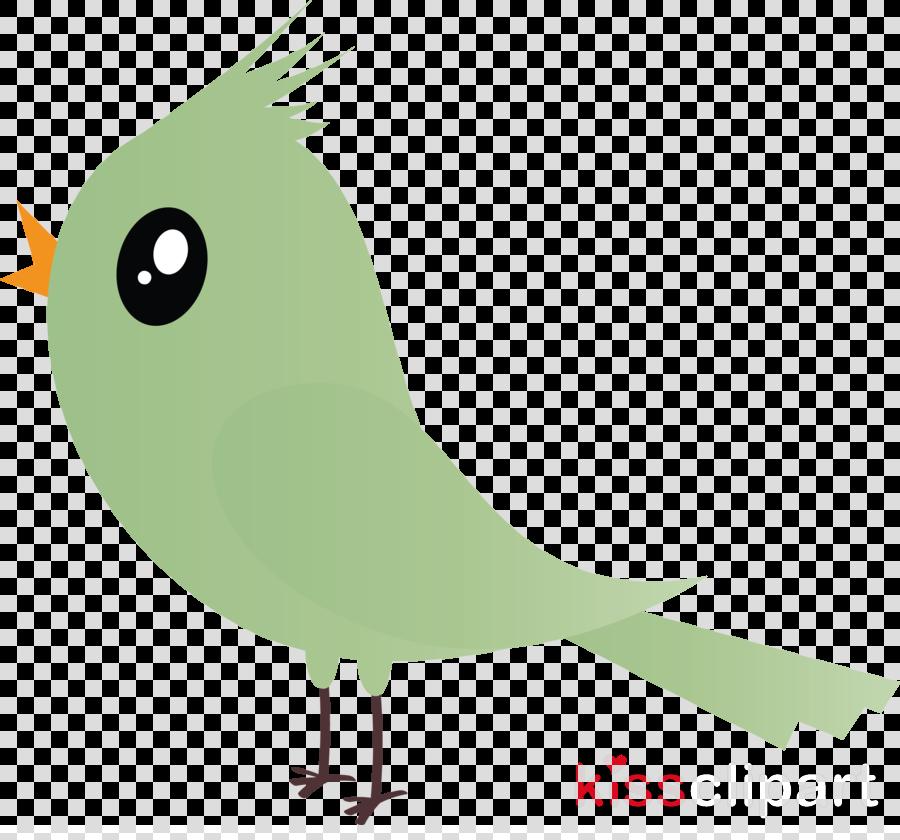 bird green beak parrot cartoon