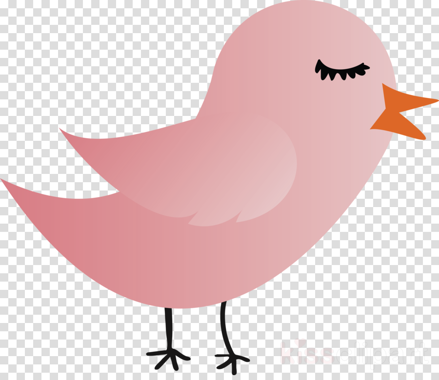pink bird cartoon lip beak