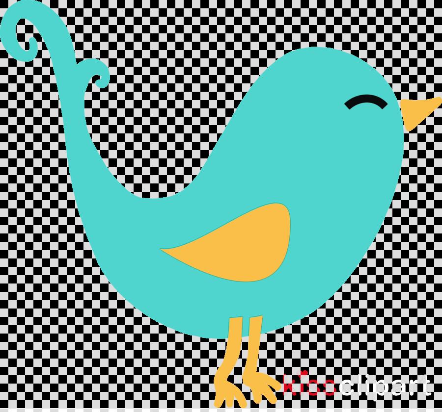 bird beak tail