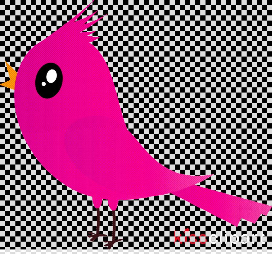 pink bird beak cartoon magenta