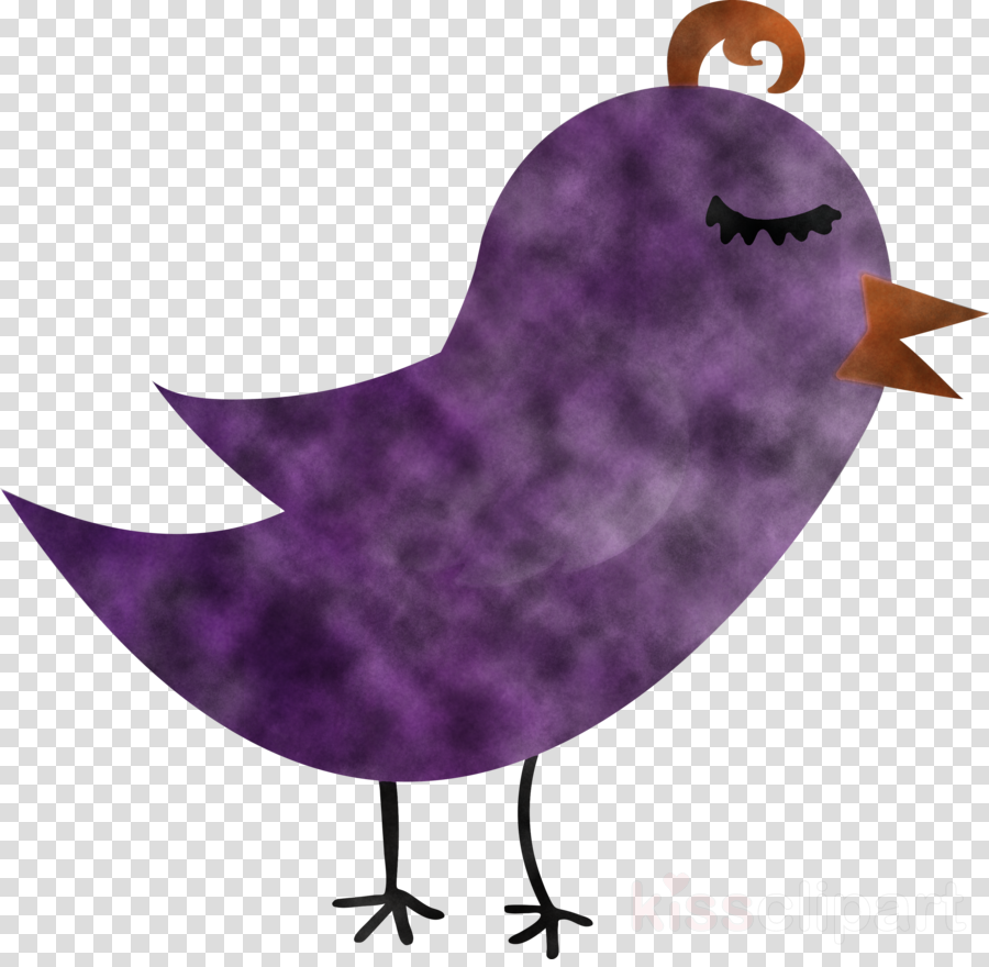 purple bird violet perching bird