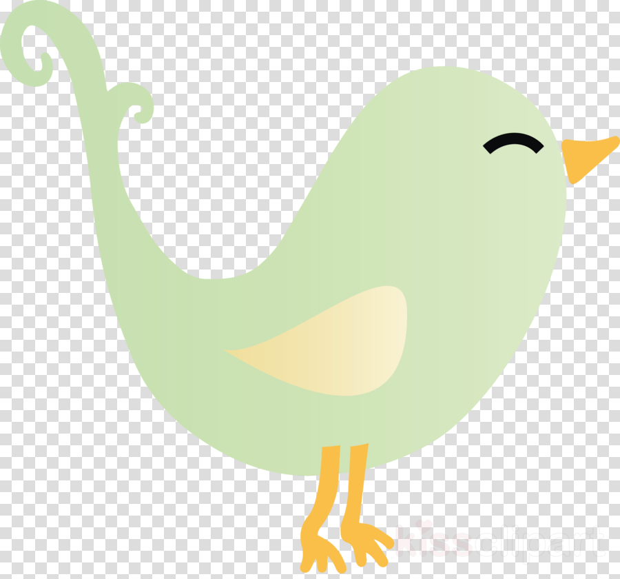 bird beak cartoon water bird tail