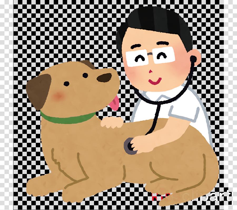 Pet Health Health Care