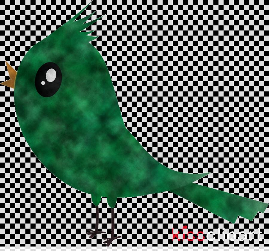 green bird beak animation perching bird