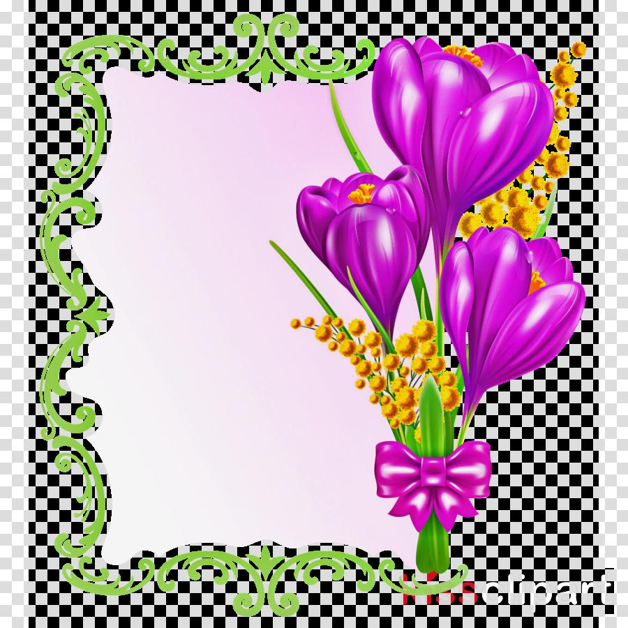 flower purple heart violet cut flowers
