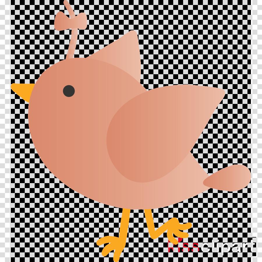 cartoon chicken bird rooster perching bird