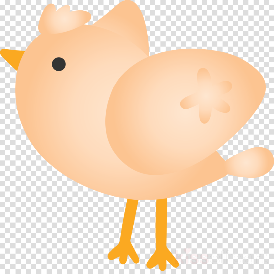 chicken cartoon bird
