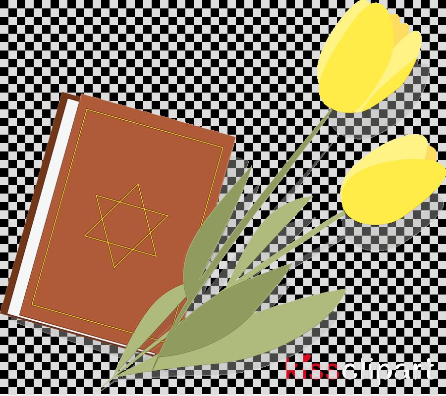 yellow tulip leaf flower plant