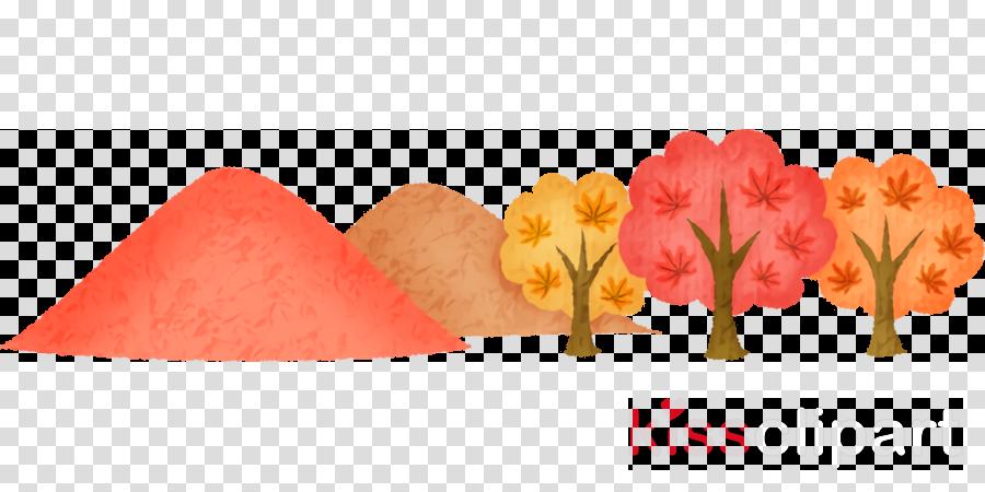 petal flower cut flowers plant tulip