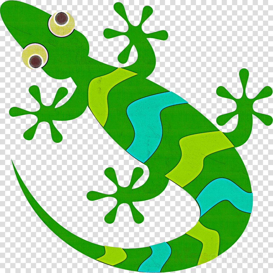 green gecko lizard scaled reptile reptile