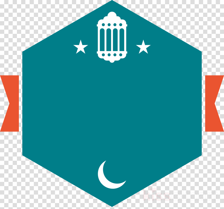 turquoise line icon flag logo