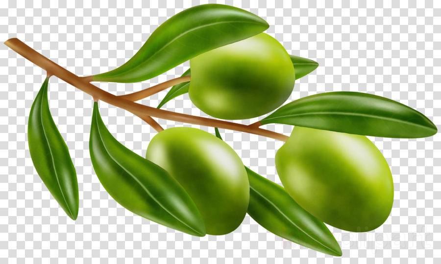 Abstract tree with different fruits on white background.