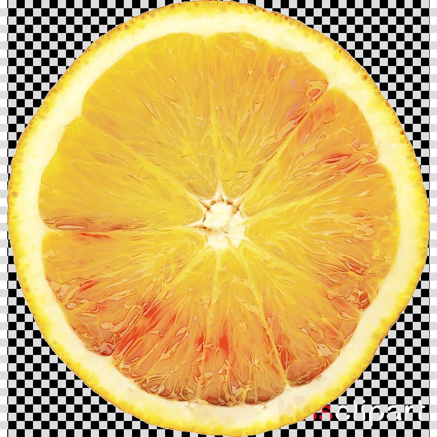 hair care lush citric acid shower gel