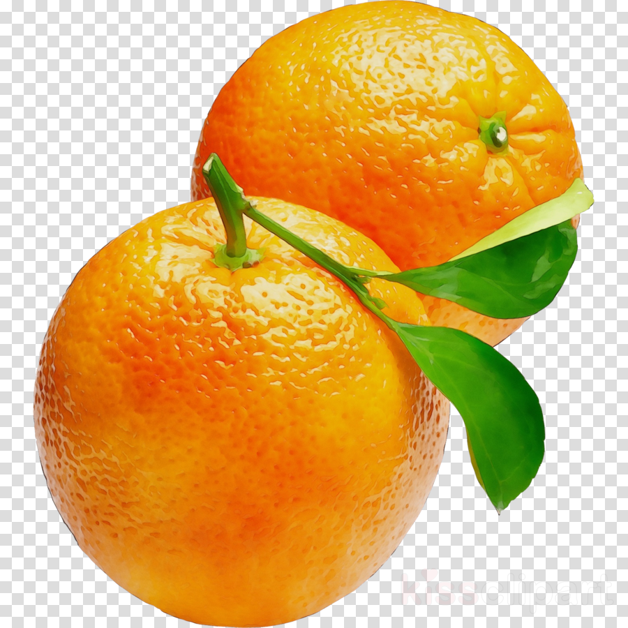 clementine puur smaak mandarin orange blood orange tangerine