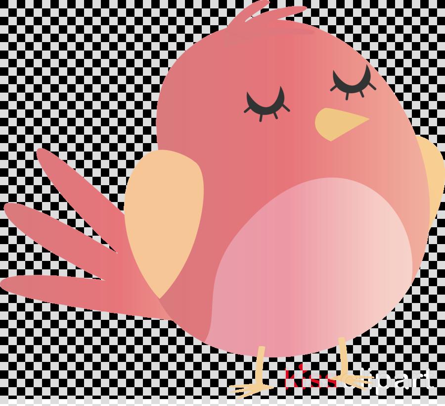 chicken birds beak bird of prey water bird