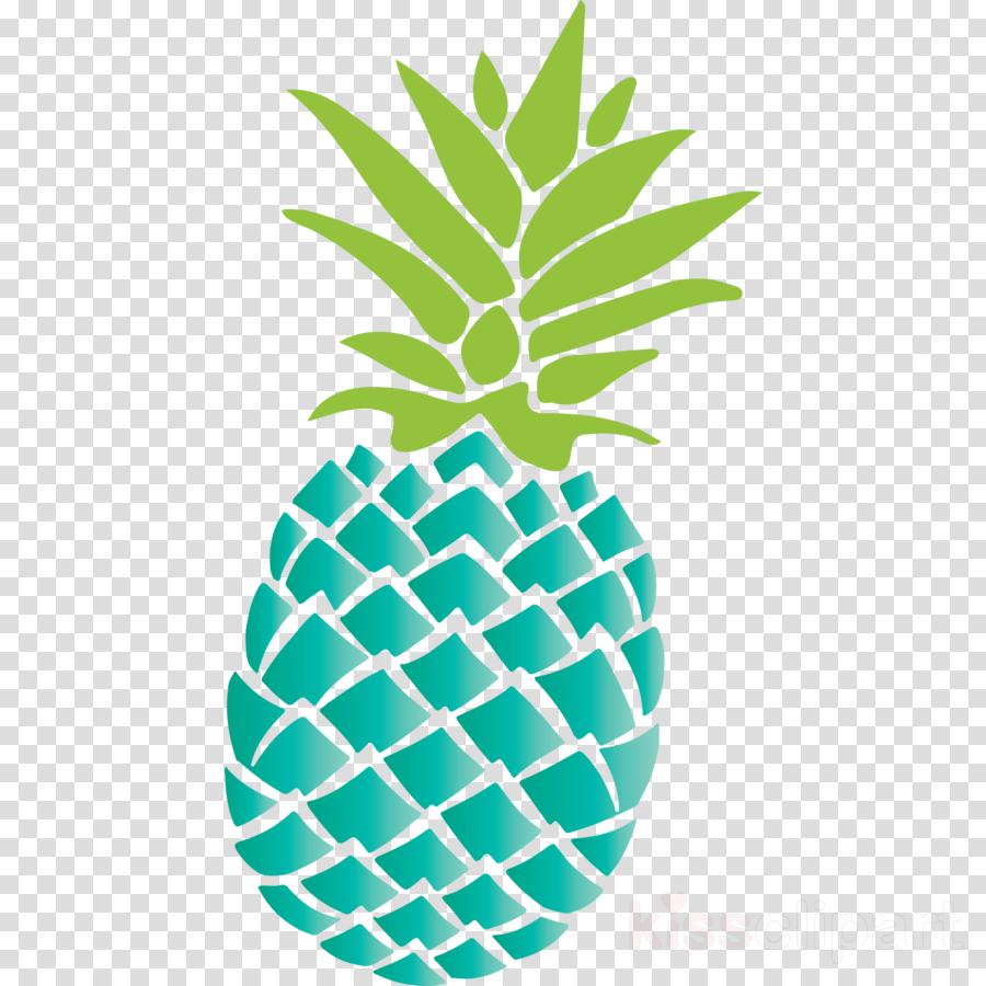 pineapple tropical summer