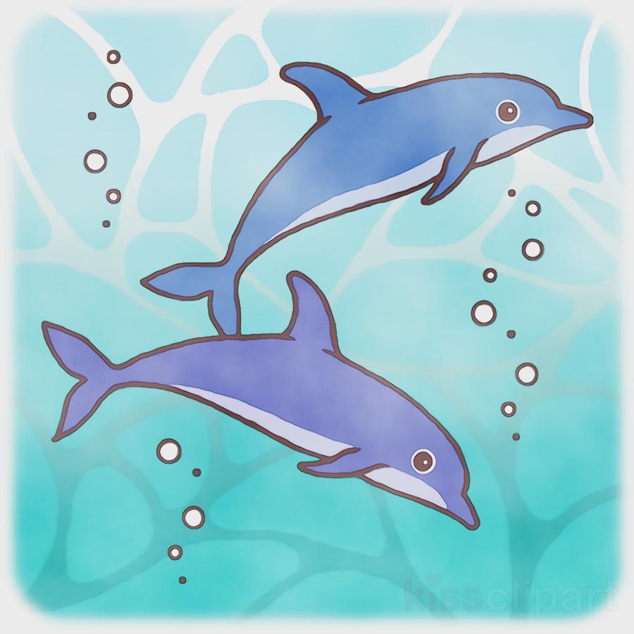 short-beaked common dolphin wholphin dolphin turquoise long-beaked common dolphin