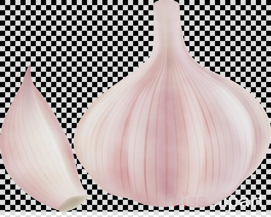pink m vase shallot