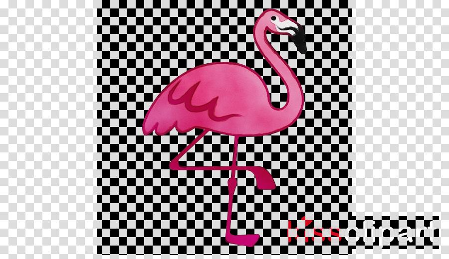 flamingo m pink m beak