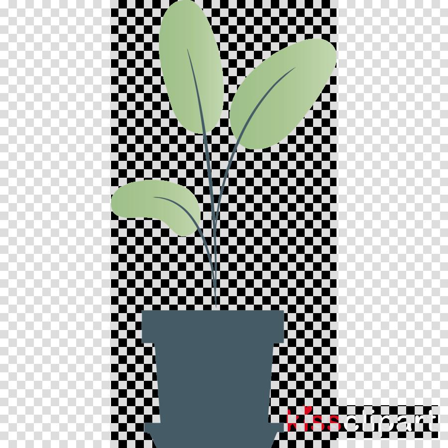 plant stem leaf flower green line