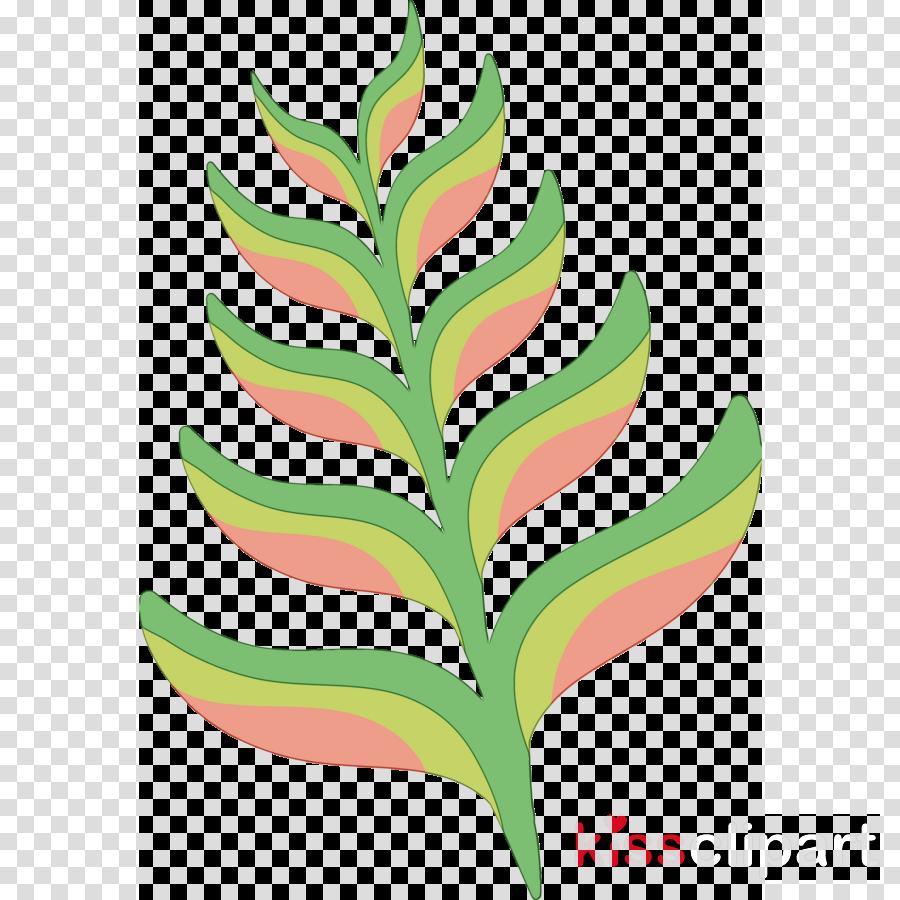 plant stem petal leaf line fruit