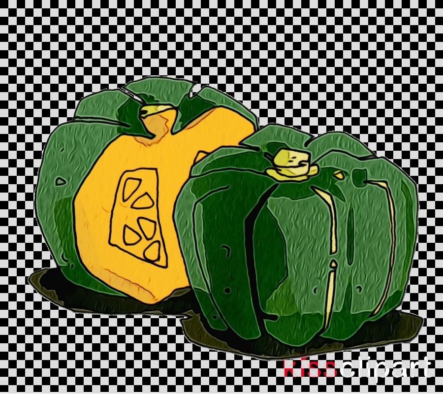 winter squash green font squash