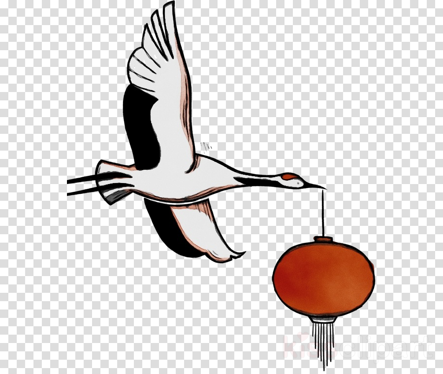 beak landfowl birds joint water bird