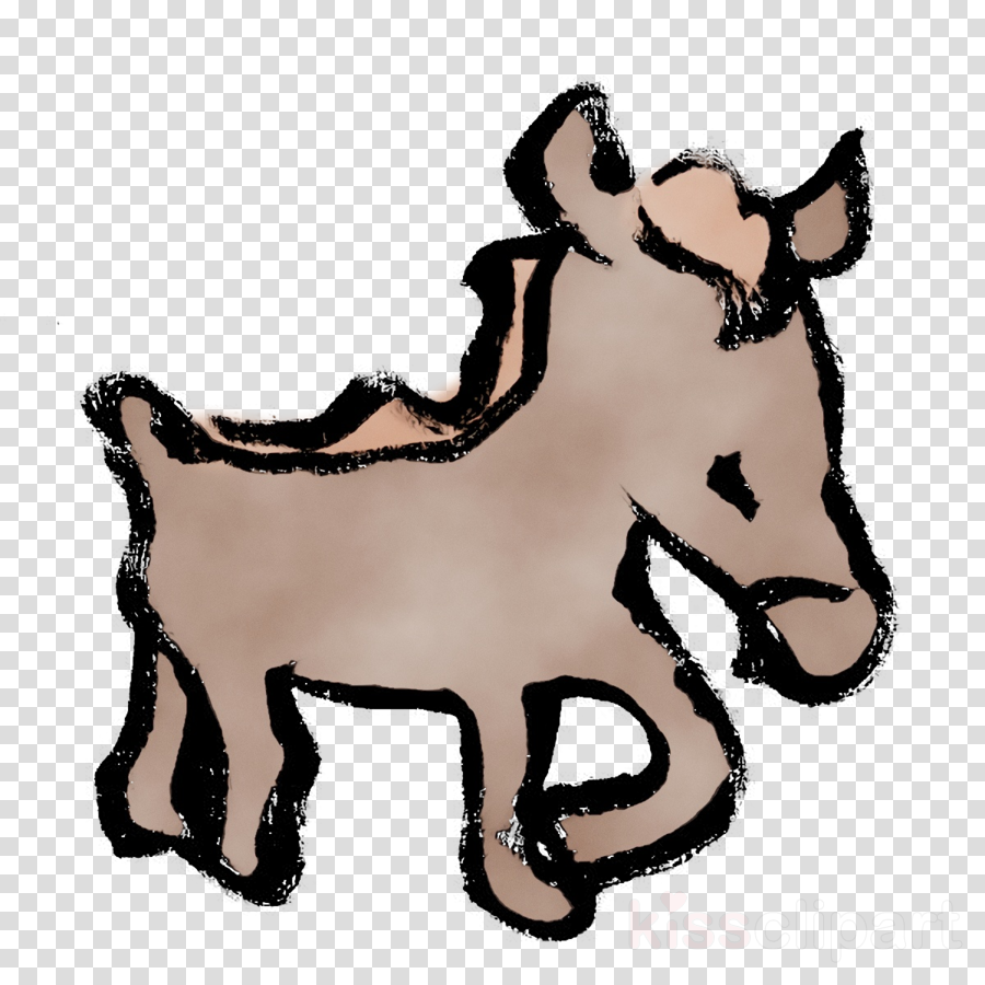 foal mustang rein halter bridle