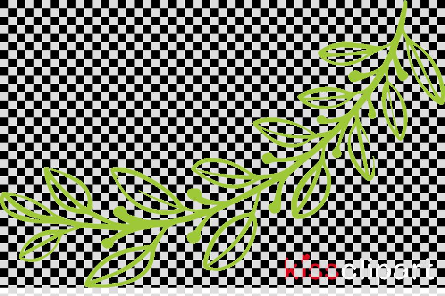 simple leaf simple leaf drawing simple leaf outline