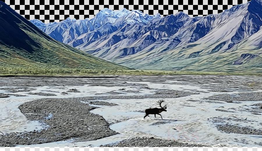 tarn moraine glacial lake glacier ecosystem