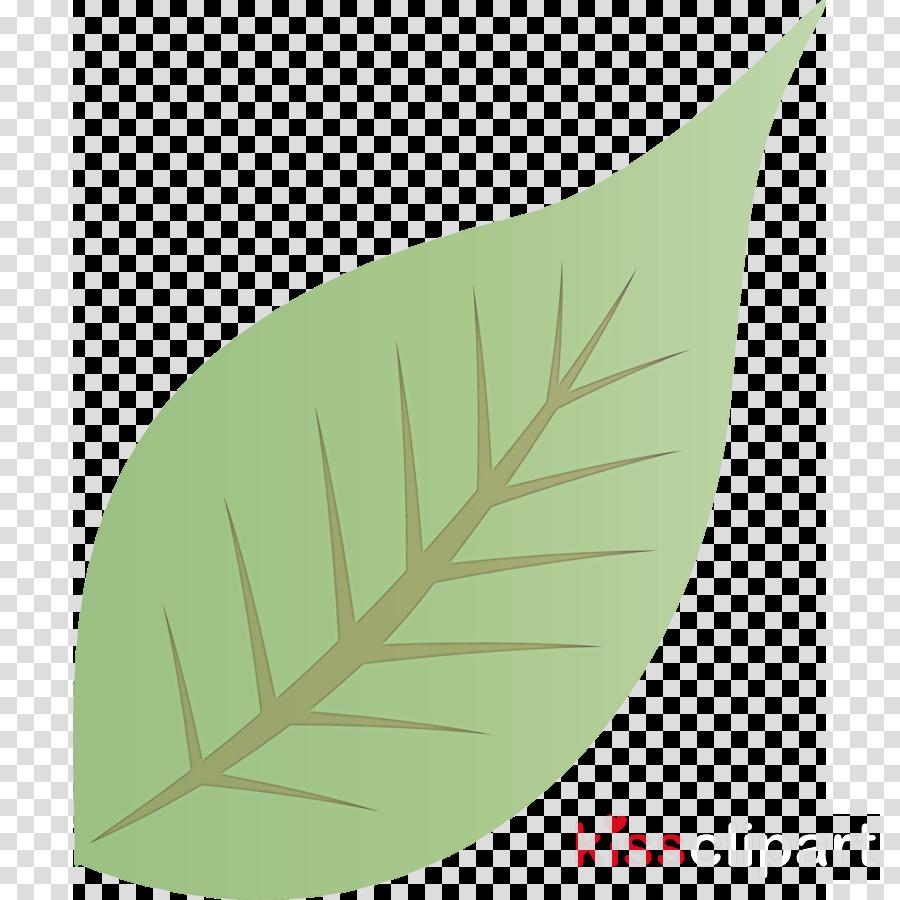 Fall Leaf Autumn Leaf