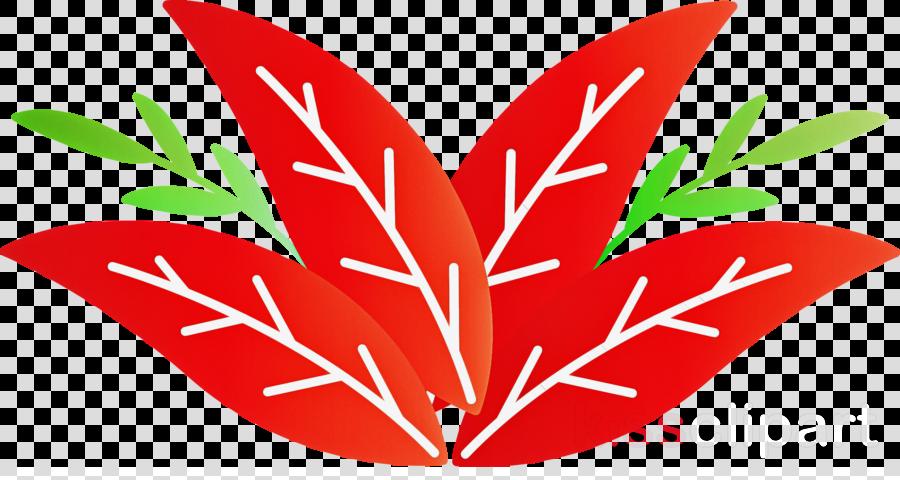 plant stem flower leaf petal fruit