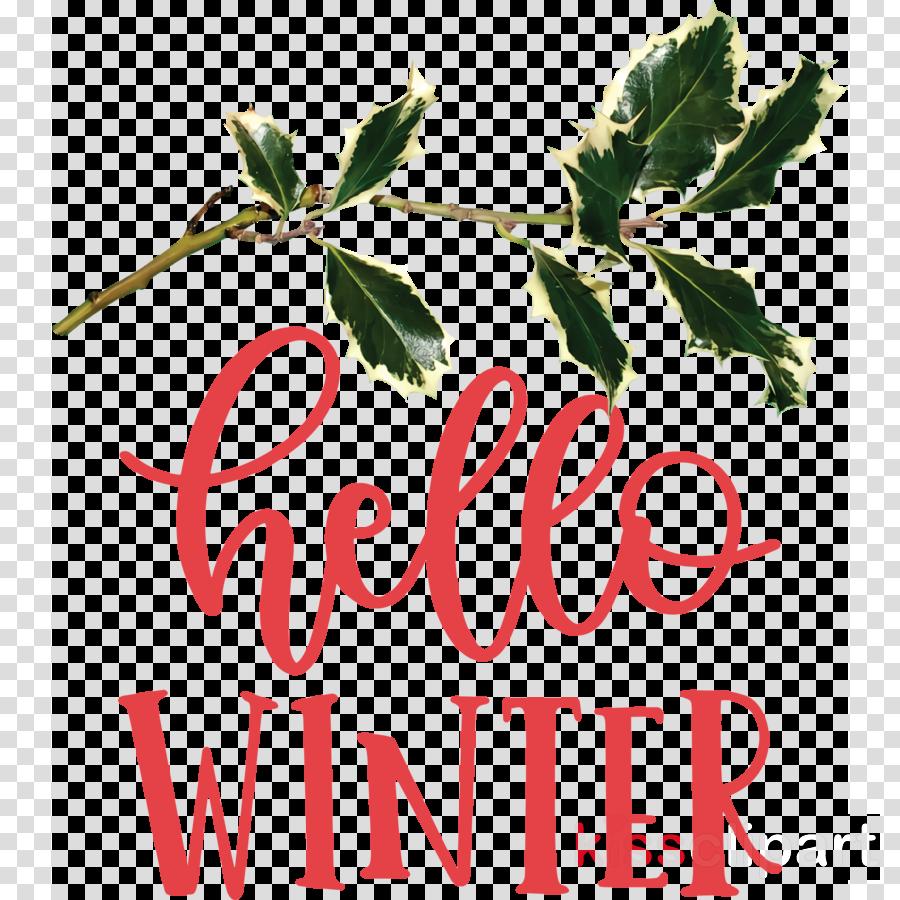 Hello Winter Winter
