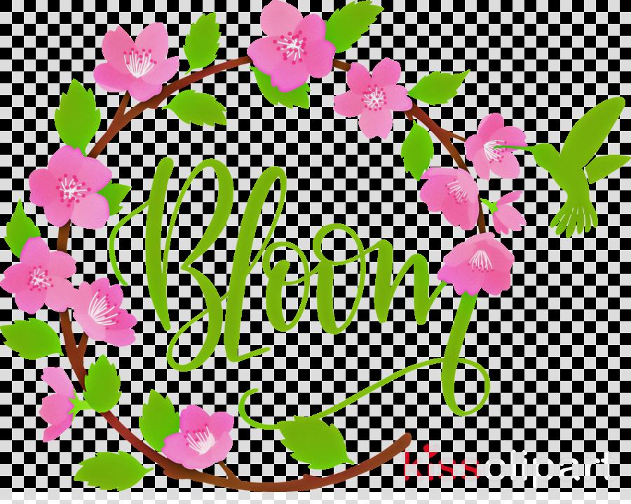 Bloom Spring