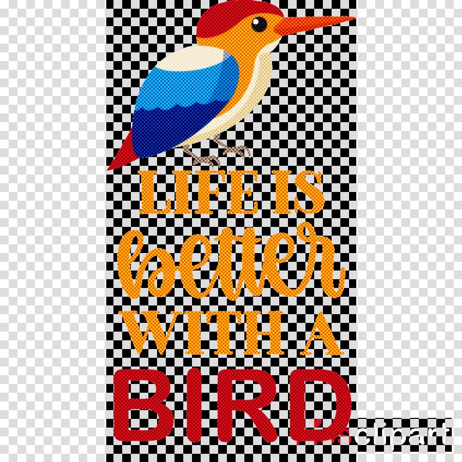 Bird Animal Pet