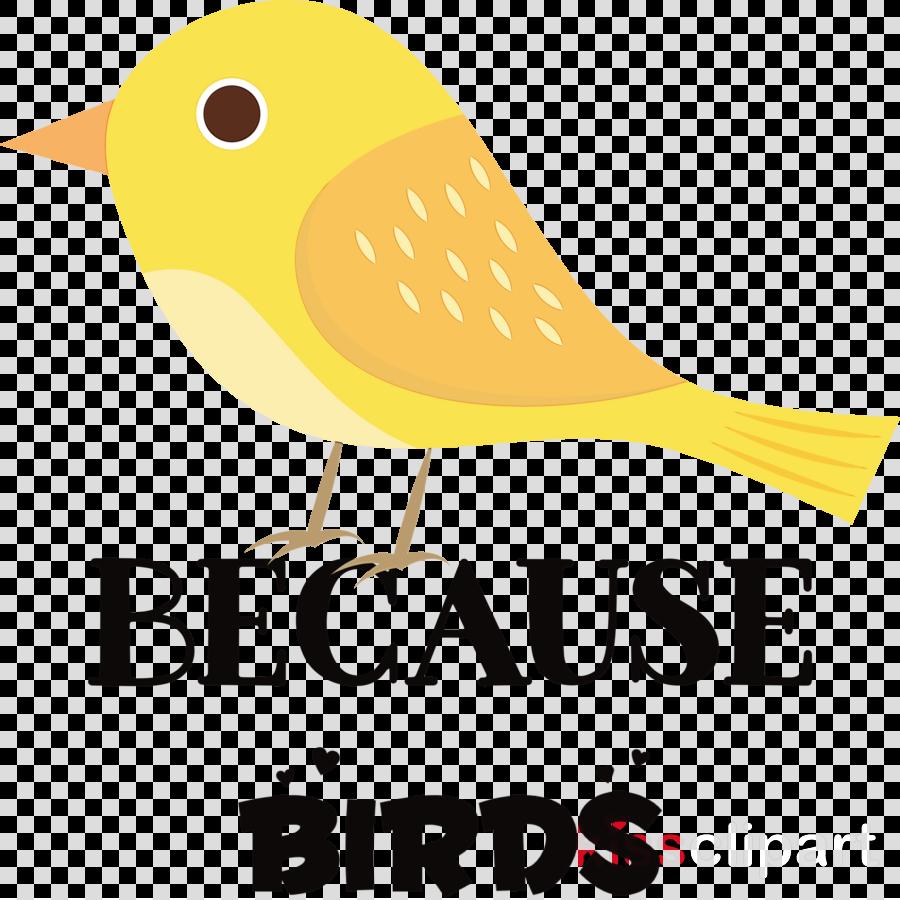 birds logo beak yellow text