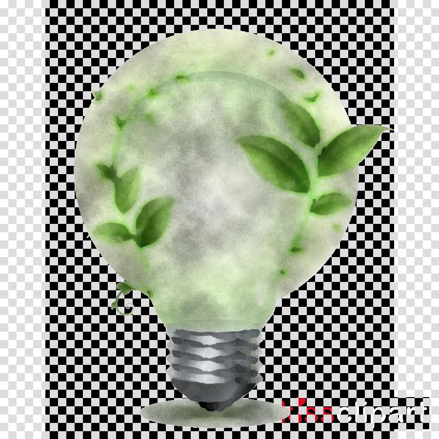 leaf green jade science biology